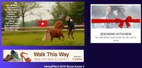 http://google-exclusive.com HORSE EVENTS INTERNATIONAL FIEREACAVALLI
