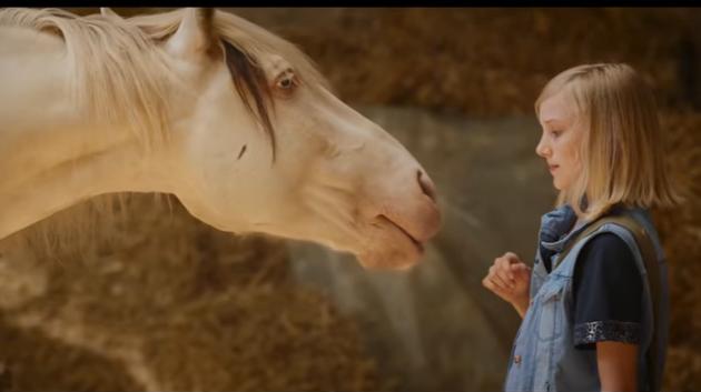pferd-und-jagd-2016-filmstart-wendy-der-film-mit-hauptdarstellerin-jule-hermann-live-autogramm-stunde-mit-deinem-star-google-exclusive-19