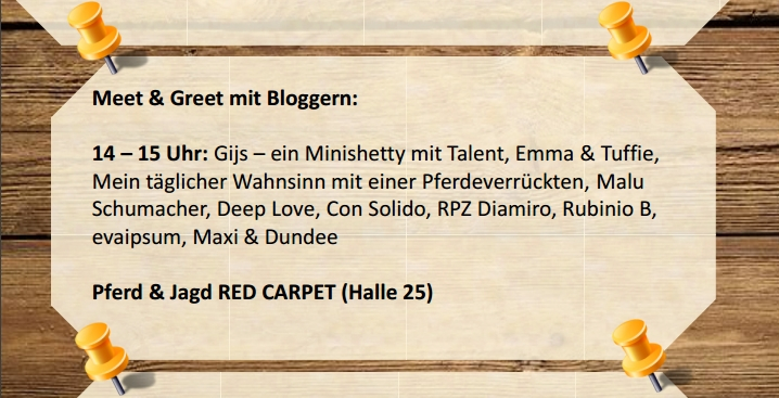 pferd-und-jagd-2016-horsejournalinternational-google-exclusive-com-besucher-info-tipp-gijs-minishetty-talent