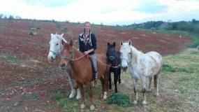 CarolineJoana Horses and Greece on Facebook Horse Riding SARTI Chalkidiki Johannes Kamp Neuss Industriemontagen